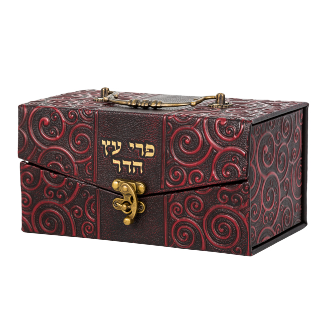 "Elegant Faux Leather Etrog Box Metal Handle & Lock 11x20x12 Cm - ""circular Decorations"""