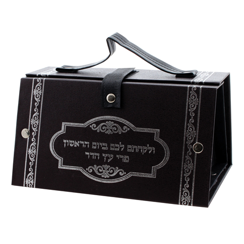 Faux Leather Etrog Box 11x19x13 Cm- With Silvered Print
